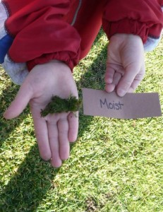 Sense of touch activity for kids... so fun! (4)