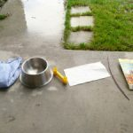 Rainy Day Fun: Science Experiment for Kids