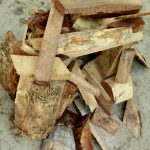 fun  firewood CAMPING game…a special guest