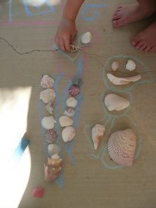 classifying shells…OCEAN fun