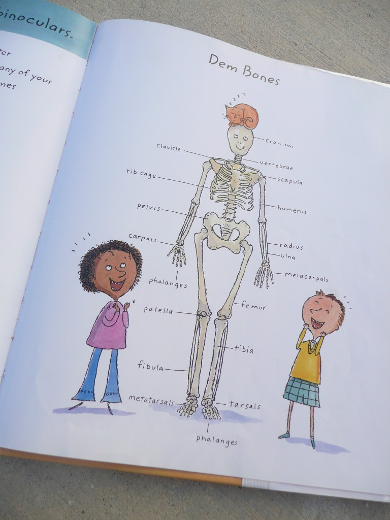 All about me Bones (6)