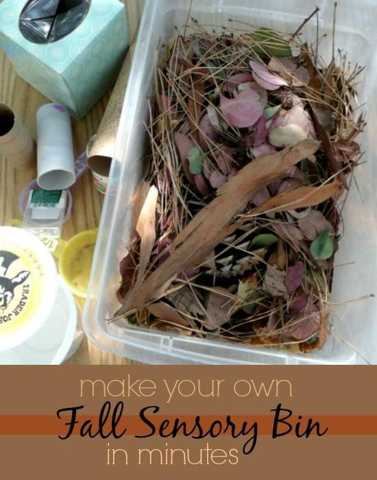 Super easy fall sensory bin for toddlers