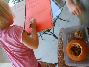 Pumpkin Science … Rotting Pumpkin