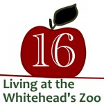 Creative Christmas Countdown Day 16… Living at the Whitehead's Zoo