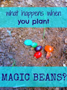 SLEEP OVER magic… magic beans