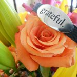 why I am so grateful… my surrogacy update