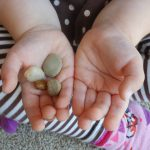 Pebble Math ~ Subtraction Game