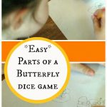 Parts of a Butterfly Dice Game
